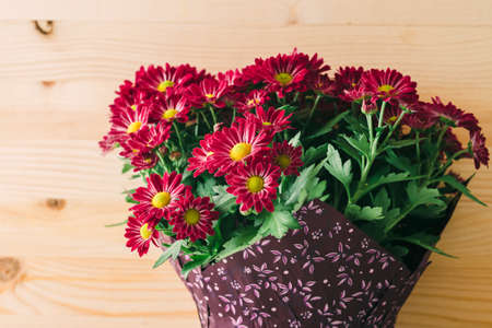 Bouquet of red Chrysanthemums close up on wooden background with copy space. Holidays, greeting card, concept