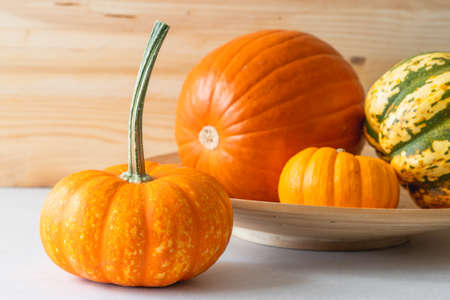 Variety of fall pumpkins and squash close up, wooden background with copy space Stock Photo