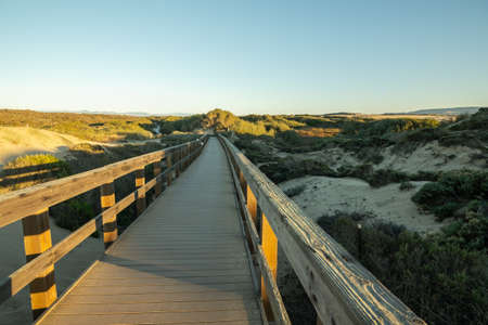 Rustic wooden beach boardwalk through sand dunes, Oso Flaco Lake Natural Area State Park, California