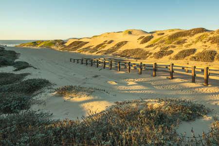 Footpath through sand dunes, California Coastline