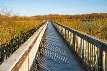 An old wooden boardwalk through the lake, Oso Flaco Lake recreation area, California