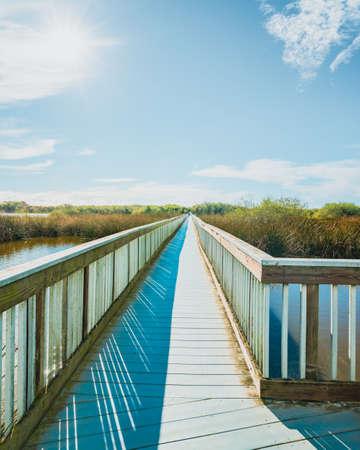 Long wooden boardwalk through the Lake. Oso Flaco Lake Natural Area, Oceano, California. Trip through several diverse natural habitats for viewing flora and fauna, vertical banner