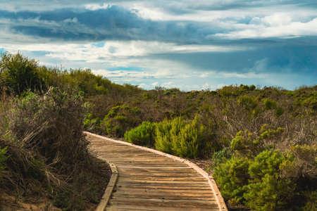 Wooden boadwalk through several diverse natural habitats for viewing flora and fauna in Oso Flaco Lake Natural area, California Zdjęcie Seryjne