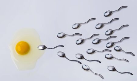 Fertilizing concept. Spermatozoa and egg as symbols, eggs and spoons. Spoons go to egg yolk as male sperm to female egg. Man and woman, future life, birth of life. Beautiful biology and anatomy.