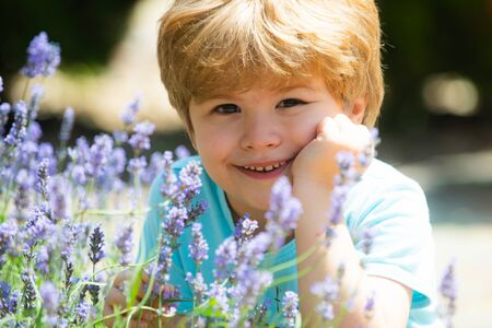 Day. Goodbye, summer. Beautiful child in lavender. Smile on the kids face.