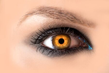 Mystic amber eye, witch witchcraft concept, fairy-tale look, fairy or young woman with beautiful make-up and yellow colored lenses for eyes. Cosmetics for make-up eyes. Open eye, Halloween.