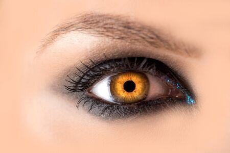 Mystisches Bernsteinauge, Hexenhexenkonzept, Märchenlook, Fee oder junge Frau mit schönem Make-up und gelben Linsen für die Augen. Kosmetik für Make-up-Augen. Offenes Auge, Halloween.