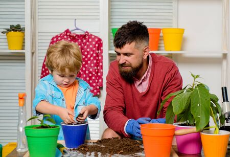 Family garden. Father and son take care of the plants together. Flowers in a pot. Boy and dad at home.