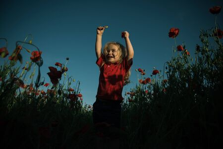 The best childrens emotions. A child in a poppy field. Spring and nature walk.