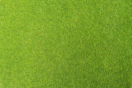 Artificial grass. Green coating on golf courses. Green background.