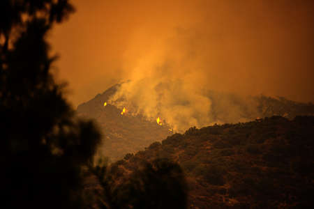 Fires and smoke in US air. Black smoke and orange sky due to fires in California. American fires threaten nature and human life.