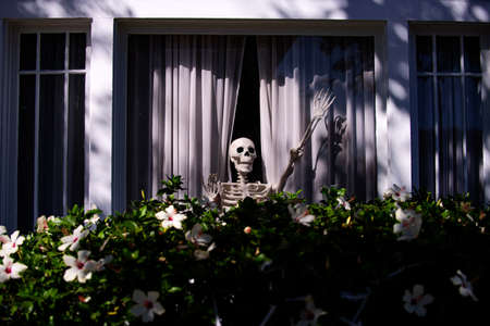 Skeleton in the window. Halloween scenery. Terrible holiday at home. Halloween in the USA. Traditions and house decor. Terrible creatures.