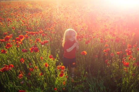 Spring child. Summer mood. Nature and children. Poppy field background.