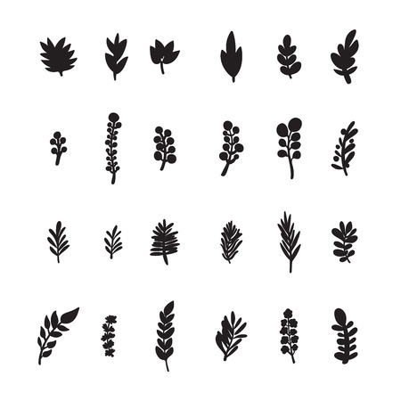Collection of hand drawn branches on white background, vector eps8 illustration Standard-Bild - 124288363