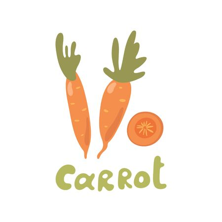 Vector illustration of carrot with tops. Sliced carrots. Pieces of carrots. Doodle style Stock Illustratie
