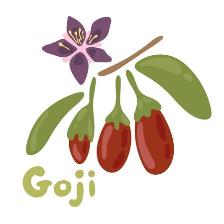 Goji berries on white