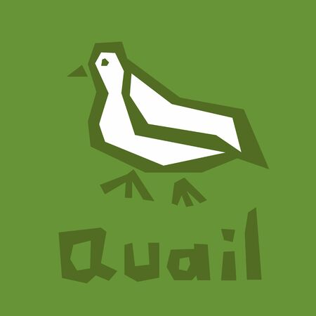 Quail  design. Vector stylized bird illustration isolated on green background. Cute quail icon. Brutal modern style. White icon, thick outline, text. Interactive card for learning the alphabet