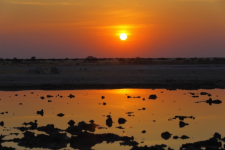 waterhole: Puesta del sol en la charca