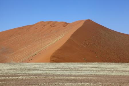 namib: Namib Dune