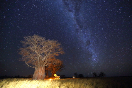 np: Camping under the milky way