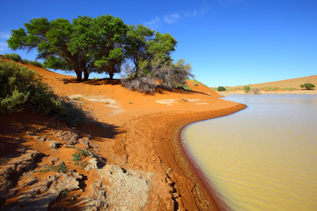 equals: Water equals green in Sossusvlei
