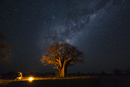 Camping under baobab's and milkyway Stock Photo