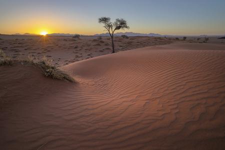 Sunset at the Kalahari sand dunes