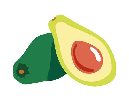 Avocado fruit on white isolated background. Icon Vector flat  illustration. Cartoon  Concept of healthy food, vegetable  for magazine, farmers market, vegetarian salad recipe design, web.