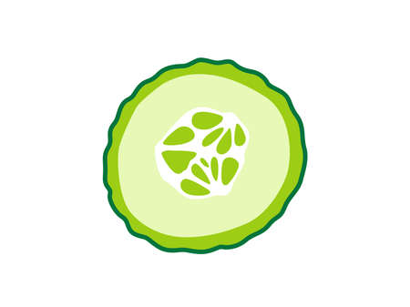 Sliced cucumber on white isolated background. Icon Vector flat  illustration. Cartoon  Concept of healthy food, vegetable  for magazine, farmers market, vegetarian salad recipe design, web.