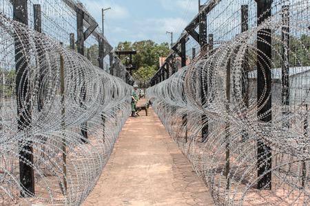 바브 철조망  감옥 캠프  국경 스톡 콘텐츠