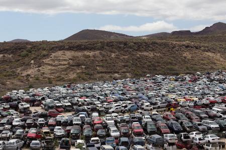 Car Wrecks on junkyard photo