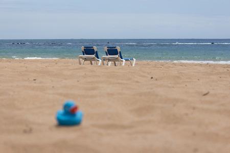 duckling: Beach sun beds duckling