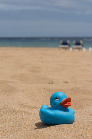 hollidays: White beach - sand, ocean, blue sky - sun beds and duckling Stock Photo