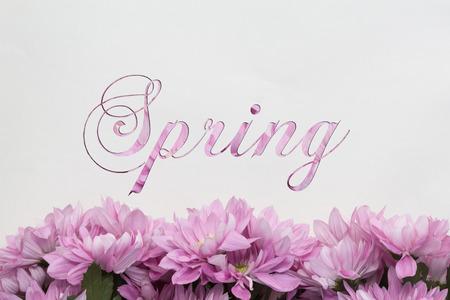 spring flower decoration Stok Fotoğraf