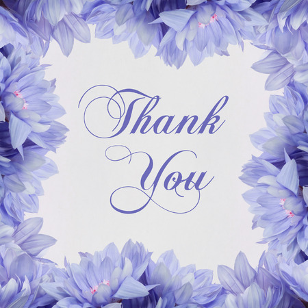 Thank you flowers on white photo