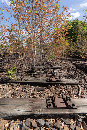 overgrown: old railway, railroad, railtrack, abandoned, destroyed and overgrown wood Stock Photo