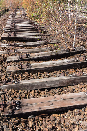 wood railroad: old railway, railroad, railtrack, abandoned, destroyed and overgrown wood Stock Photo