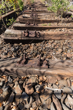 railtrack: old railway, railroad, railtrack, abandoned, destroyed and overgrown wood Stock Photo