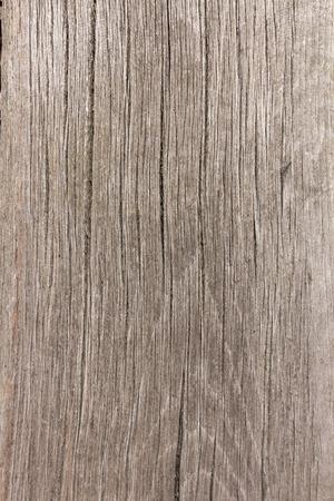 limber: Wood texture close up - wooden background