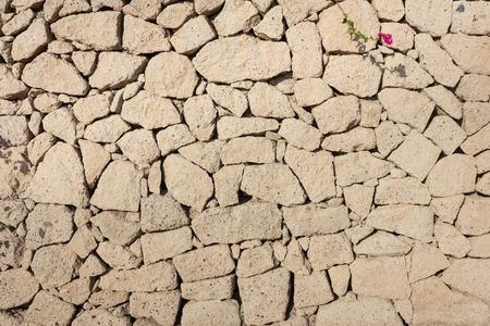 empedrado: toba muro de piedra de fondo - pavimentada muro de piedra natural
