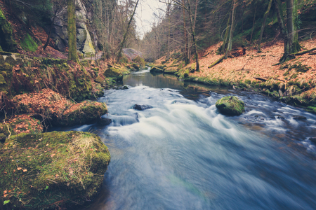 filtered: river in forest landscape during autumn, vintage filtered Stock Photo