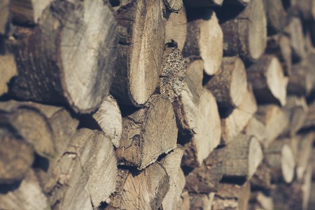 firewood background: wood - stacked logs, of firewood background