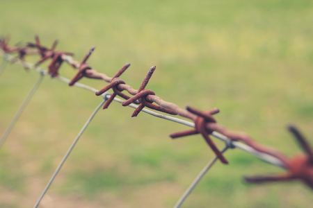 barbed wire frame: rusty barbwire macro - barbed wire closeup Stock Photo