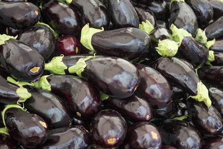 aubergine: pile of eggplants  aubergine background