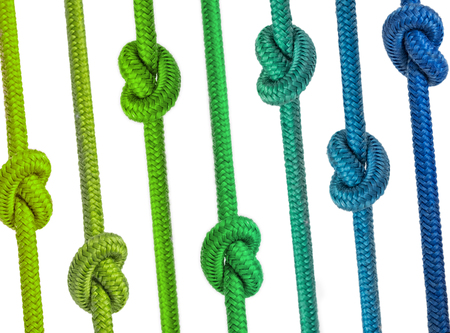 colorful group of ropes with knots in a row