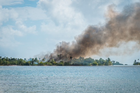 bushfire, black smoke above burning forest - fire on tropical island Stock Photo