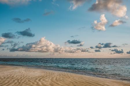 standing on beach looking on ocean horizon in evening sun Фото со стока