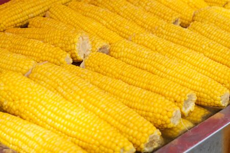 corncob closeup -  cooked, yellow corn for sale -