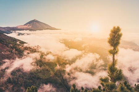 pico del teide, mountain summit above the clouds, Tenerife, Spain