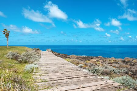 wooden walkway near ocean coast  - wood footpath -